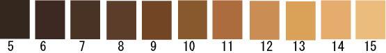 NPO法人日本ヘアカラー協会のヘアカラーリング・レベルスケールという髪色の明るさの基準です。